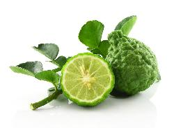 Citrus Bergamia